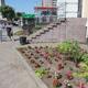 Конкурс «Цветущий город»