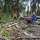 Субботник вПуловском лесу