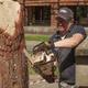 Фестиваль деревянных скульптур вЧереповце