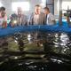 Рыбоводческий комплекс вЧереповецком районе