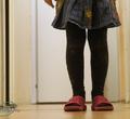 ВВологодской области сироты иприемные дети будут получать пособие наподготовку кшколе