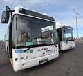 ВЧереповец пришли 18 новых автобусов