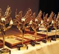 Череповецкие психологи выиграли всероссийский конкурс «Золотая Психея»