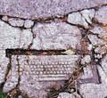 Череповецкие археологи отметят профессиональный праздник онлайн-марафоном