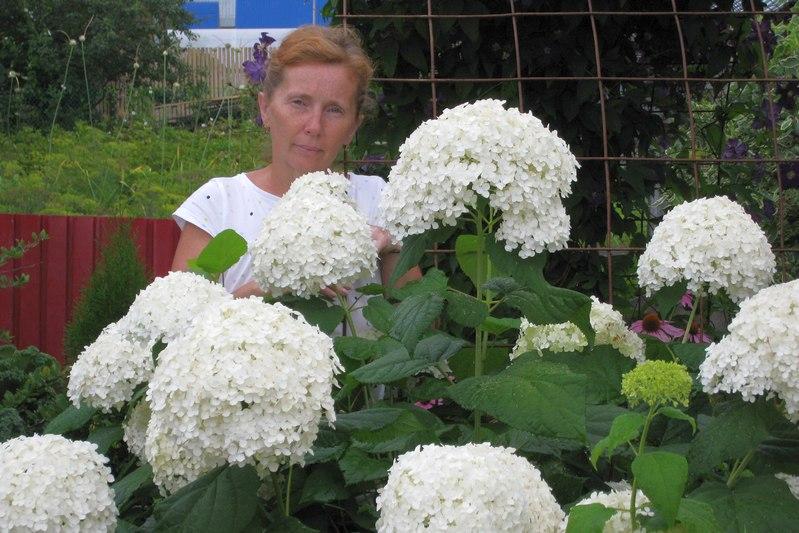 Ольга Шанькова