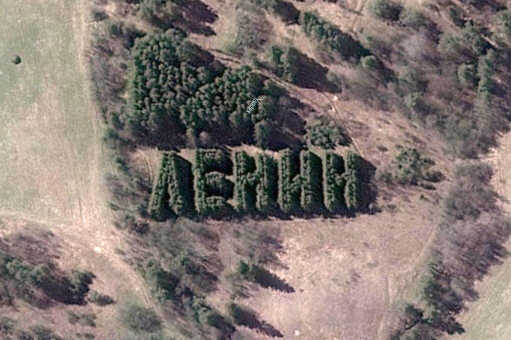 Надпись «Ленин» изживых деревьев вВытегорском районе